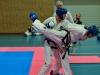 Taekwondo, maj 2015